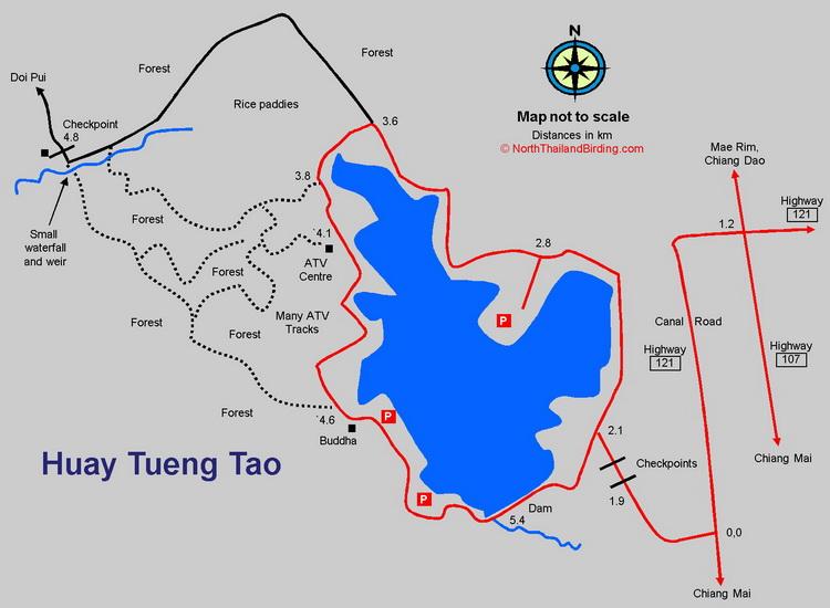 Huay Tueng Tao - North Thailand Birding